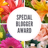 My First Nod For Special Blogger Award